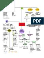 mapa conceptual del suelo.pdf