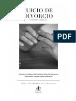 Practica Forense Del Juicio de Divorcio