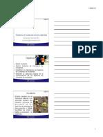CSI Colmena Comando Incidentes.pdf