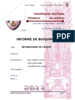 PROCEDIMIENTO y Resultados Lipoproteinas-nasti Informecompleto