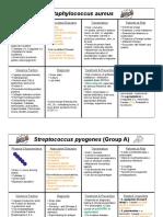 Bacteria_List_Exam__1.pdf