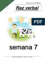 rv _7_.pdf