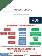 Embriología Del Ojo