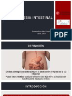 atresia intestinal