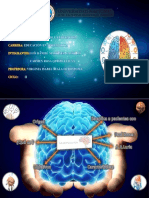 Exposicion de Neuropsicologia.pptx [Autoguardado]