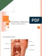 Anatomia Digestória