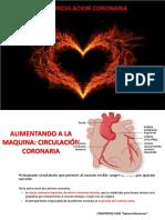 TEMA 12, Circulacion Coronaria