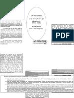 PMI 2008 folleto
