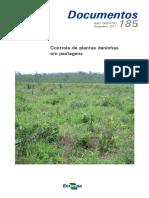 03 Potencial Produtivo de Diferentes Cultivares de Soja Em Lucas Do Rio Verde