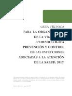 Guía Técnica Organización VE IAAS, Ago-2017