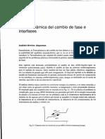 Termodinamica del cambio de fase e interfases.pdf