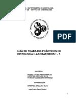 Guia de LABORATORIOS 1 - 5 - SEM 2 -2018.pdf