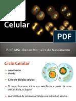 Aula 3 - Citologia (Ciclo Celular)