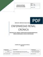 Protocolo ERC Final (SSC)