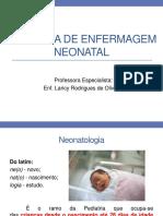 1- A Prática de Enfermagem Neonatal-1-1-1