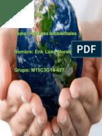Luna Morales Erik M15S3 Políticasambientales