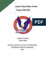 Pengantar Ilmu Sosial