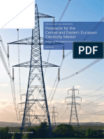 KPMG Prospects for the CEE Electricity Market Secured