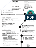 CV Professionnelle Abderrafie