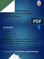Plataforma Carbonatada y Sedimentación Evaporítica