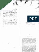 ADORNO e HIRKEHEIMER - Temas básicos da sociologia - Sociedade.pdf