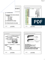 ApiTema05Web(1).pdf