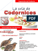presentaciondecodorniz-110618214052-phpapp01