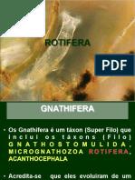 21 Apresentação Rotifera