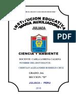Contaminacion Del Suelo Maria Auxiliadora