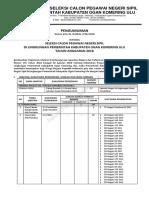 PengumumanCPNS_OKU_tahun2018.pdf