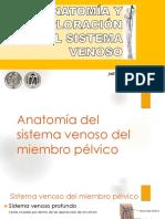 Anatomiaysemiologiavenosa