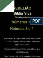 Biblia Viva Numeros 16
