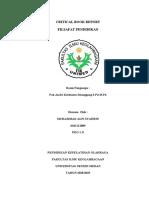 CRITICAL BOOK REPORT - Copy.pdf