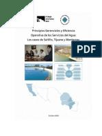 Principios Gerenciales y Eficiencia Operativa de los Servicios del Agua