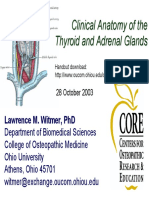 2003-10-28_thyroid-adrenal.pdf