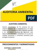 auditoria ambienta
