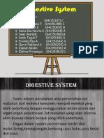 dygestive system