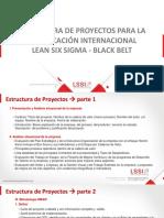 Estructura de Proyectos Lean Six Sigma