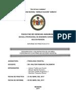 DESCRIPCION Y DELIMITACION DE UN AREA  FISIOGRAFICO CON FINES DE ESTUDIO VEGETAL