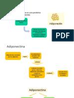 Adiponectina