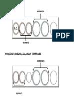 Distribución prensaestopas_1.pdf
