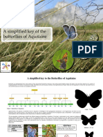 A Simplified Key to the Butterflies of Aquitaine