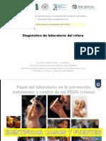 3.- 1.5 Eritropoyesis Sin Imagenes (Terminologia)
