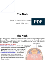 Head Neck - Lecture 1112 - Neck