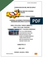 Monografía Del Fosforo ECOLOGIA