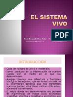 Desarrollo y Ap. Motor 13 - 4 .pdf