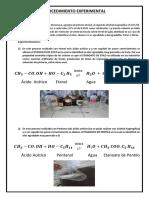 Laboratorio 1 IV