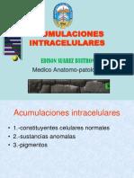 02ACUMULACIONES INTRACELULARES.ppt