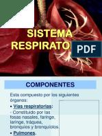 MUÑA- PLANTAS MEDICINALES