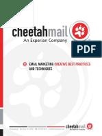 Cheetahmail_Creative.pdf